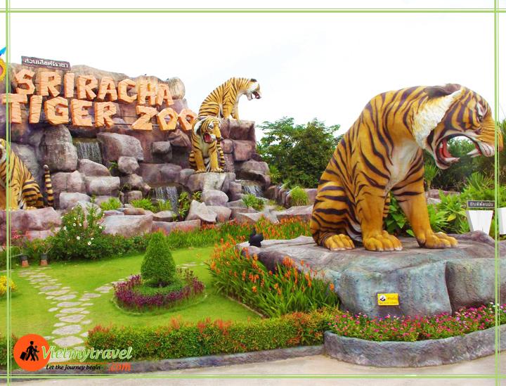 trại cọp tiger zoo