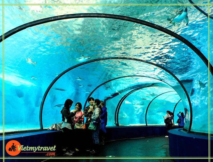 công viên đại dương học