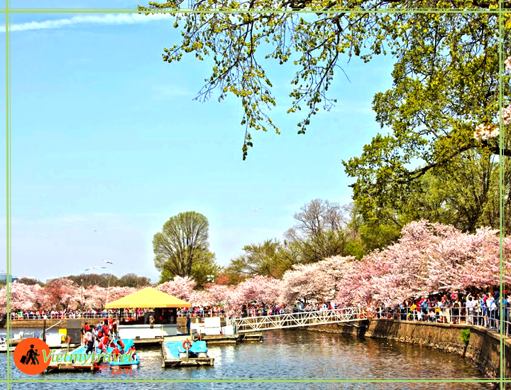 du lịch hoa kỳ Vietmytravel