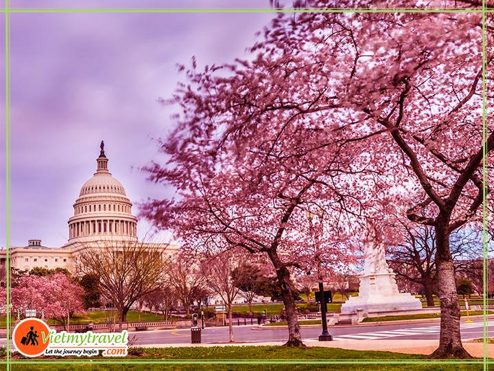 Điện Capitol hoa kỳ