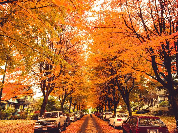 Du lịch Canada vào mùa thu