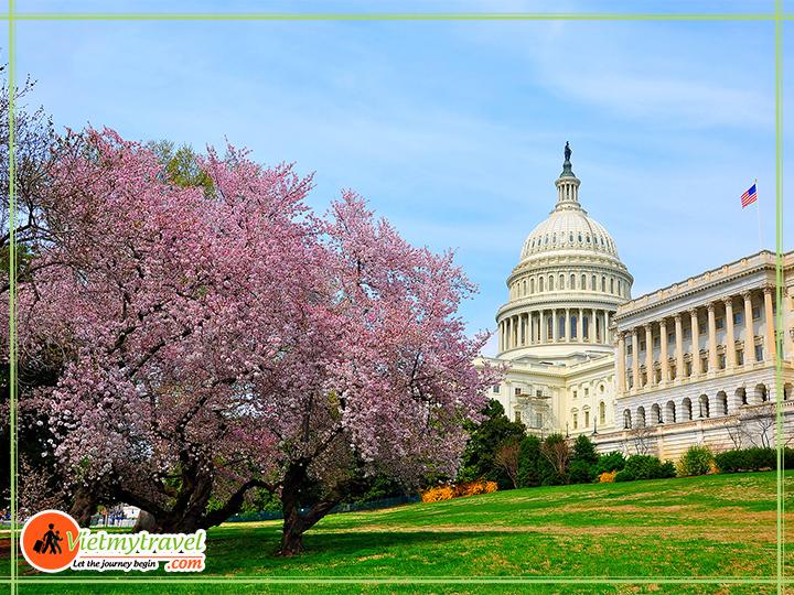 Tour du lịch Mỹ liên tuyến Đông Tây - Điện Capitol - kiến trúc mái vòm đẹp nhất thế giới.