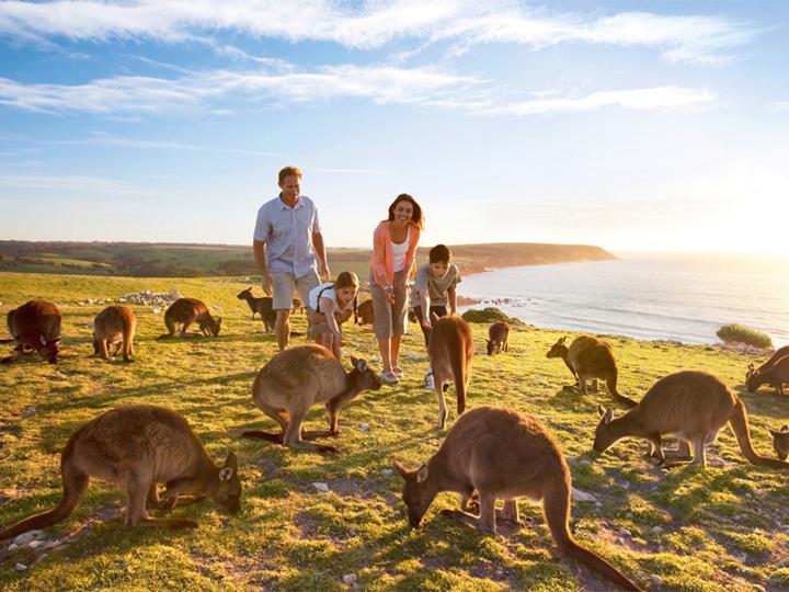 Xin visa Úc theo diện thăm thân sẽ được xét duyệt dễ hơn.